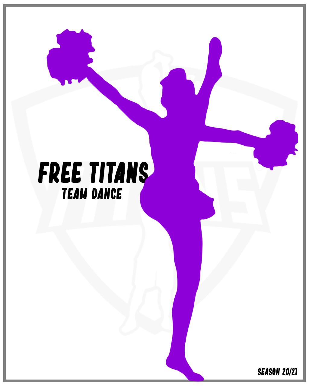 Free Titans poms
