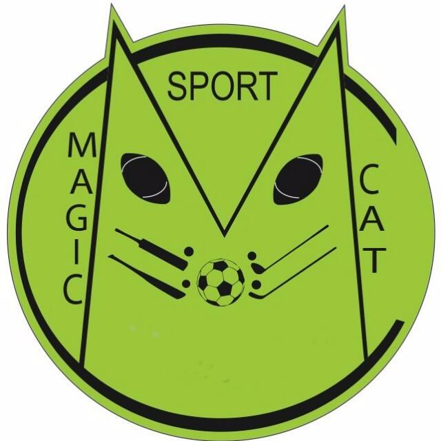 Logo MagiCat
